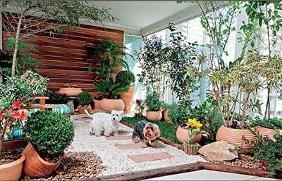 fotos de quintais decorados