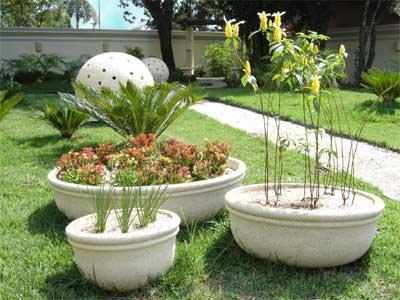 imagens de vasos para jardins
