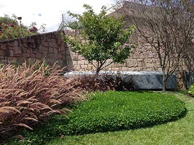 foto de jardim