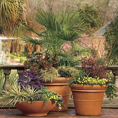 dicas de vasos para jardins