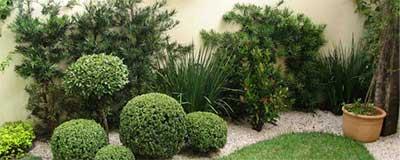 jardins aparados