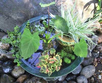 imagens de tipos de jardins