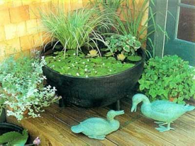 dicas de tipos de jardins