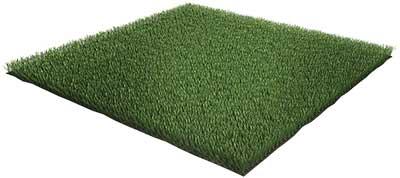 folha de grama