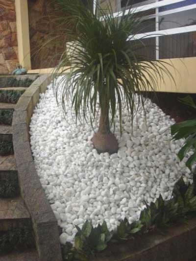 pedras de jardim branca : pedras de jardim branca:Jardim com Pedras (Fotos, Flores, Pedras, Ornamentais)