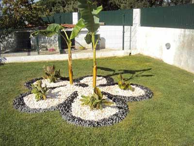 fotos de jardins com pedras