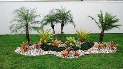 com plantas