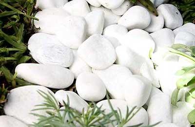 com pedras