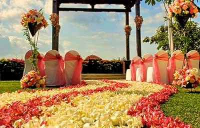 imagens de casamento no campo