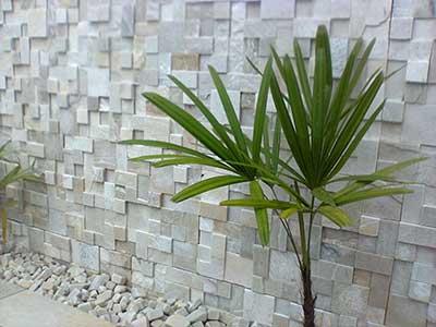 modelo de revestimento para parede