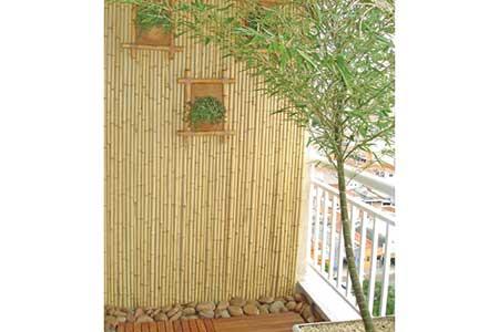 Decora o com bambu verde e seco fotos dicas imagens - Tipos de bambu ...