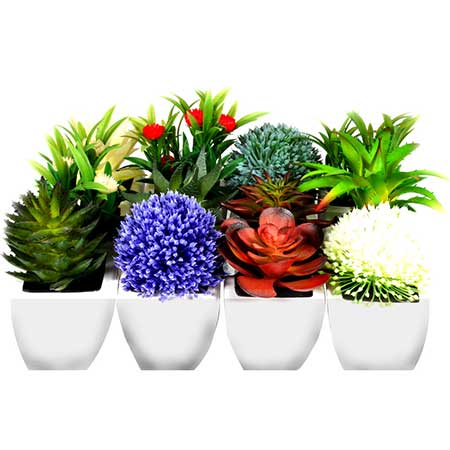 fotos de vasos com flores