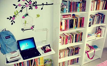 imagens de estantes de livros