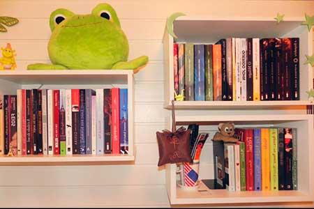 dicas de estantes de livros