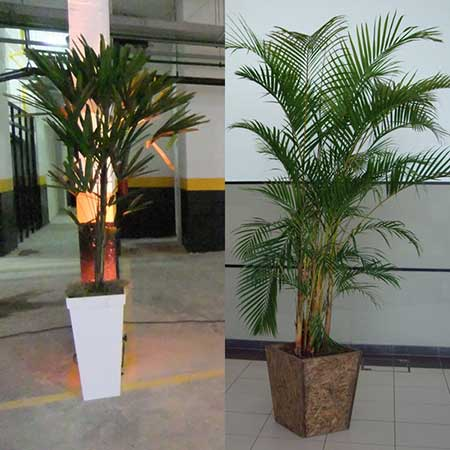 plantas artificiais