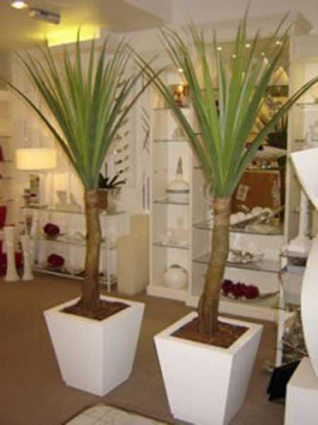 salas com plantas artificiais