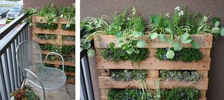 dica de como criar jardim
