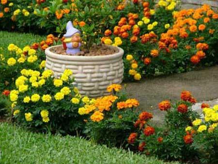 Como fazer um jardim barato e f cil em casa for Plantas baratas