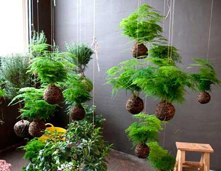 Como fazer um jardim barato e f cil em casa - Capazos baratos para decorar ...