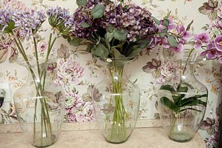 plantas decorativas em vasos