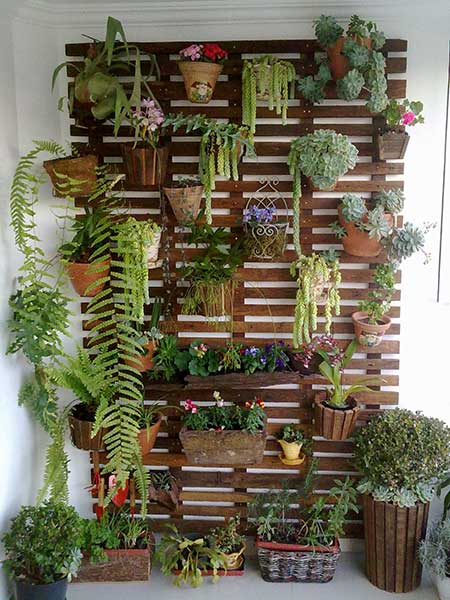 fotos de jardins verticais