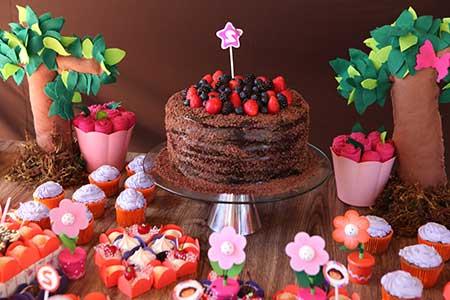 Decoração de Aniversário Dora Aventureira