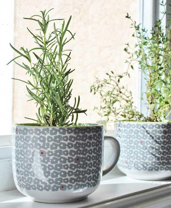 xícaras em vasos de flores